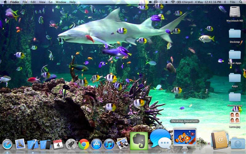 Desktop Aquarium   Relaxing live wallpaper background on the Mac App 800x500