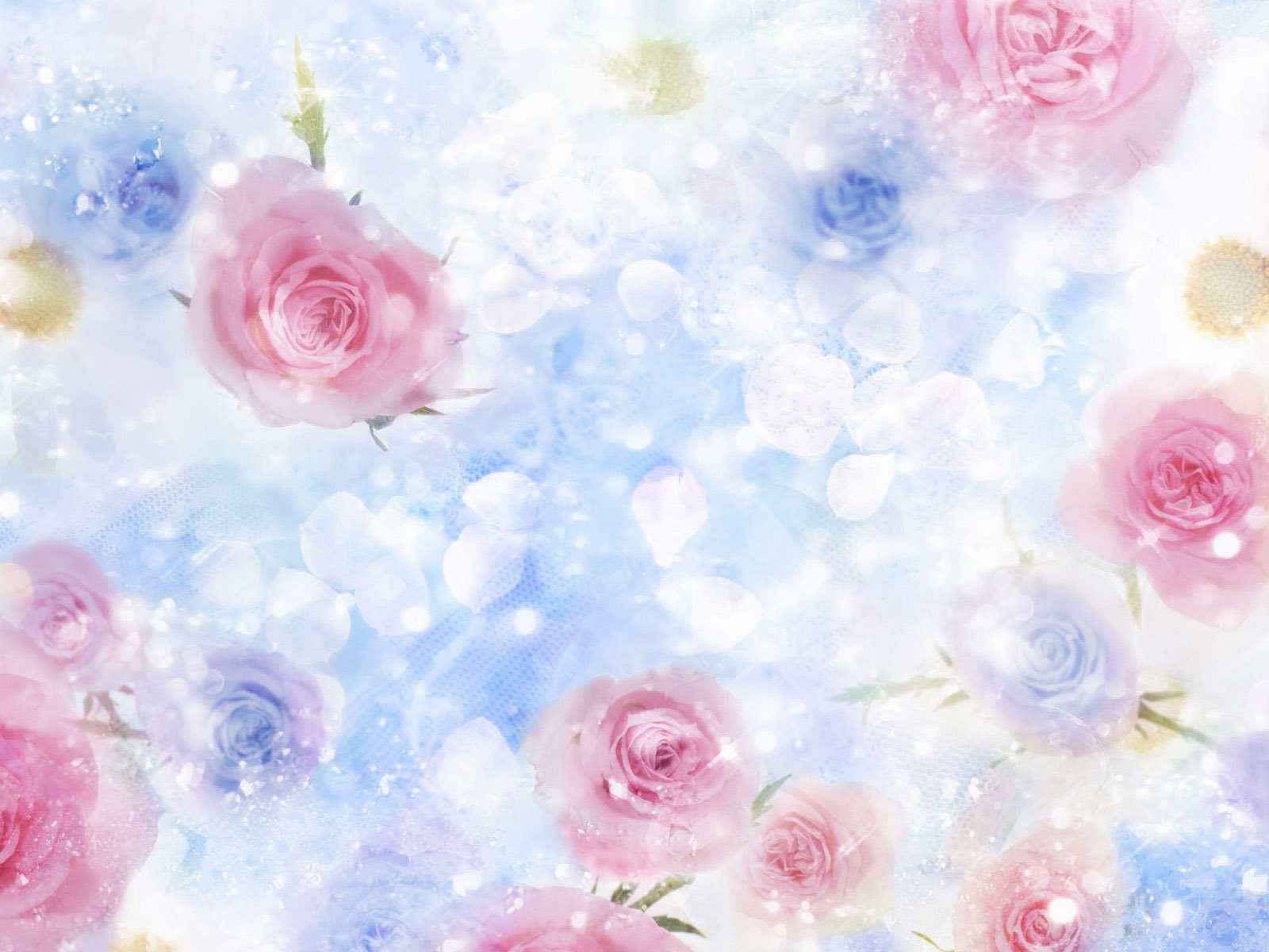 1600x1200px Beautiful Flower Background Wallpapersafari