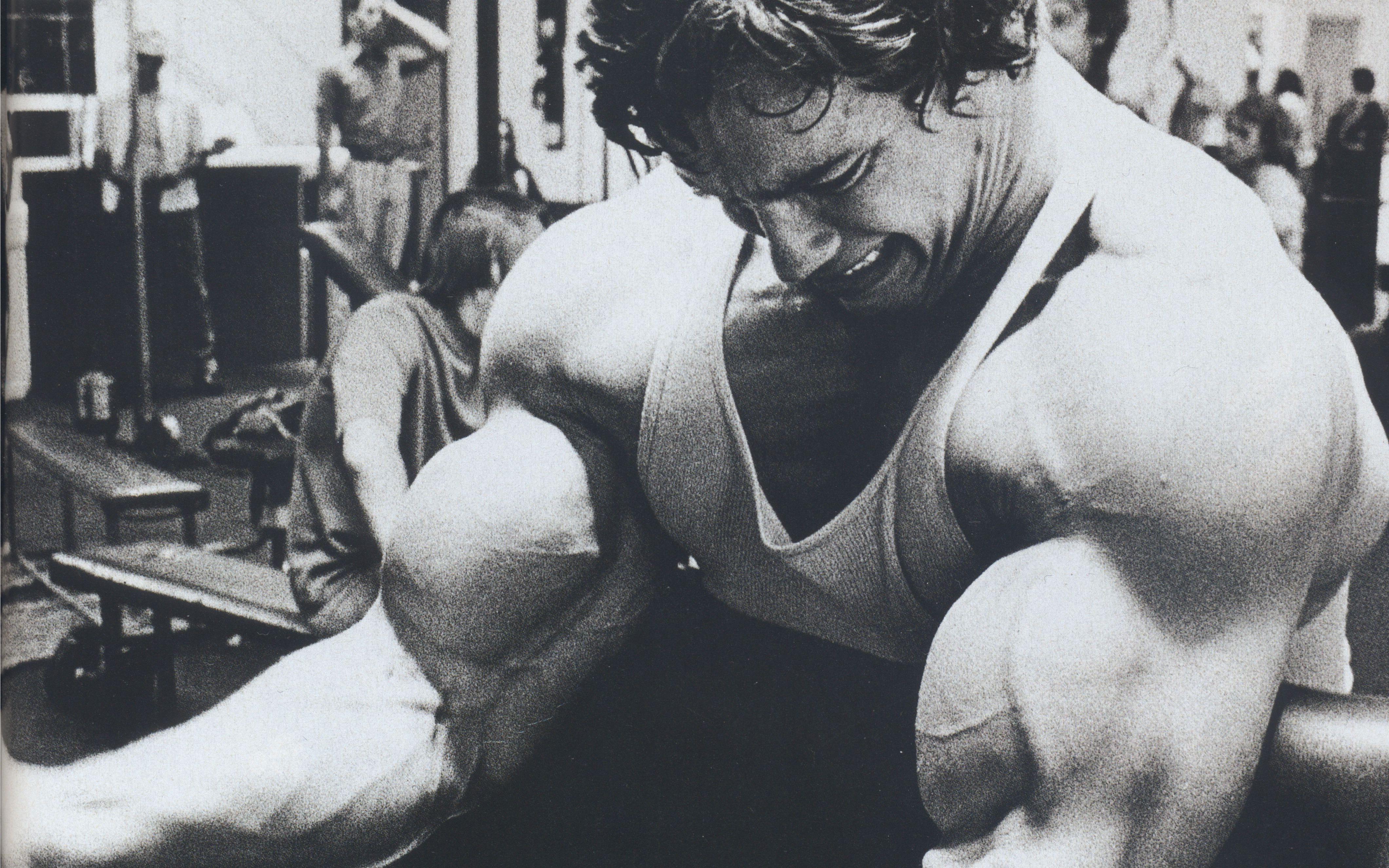 Arnold Schwarzenegger iPhone Wallpaper - WallpaperSafari
