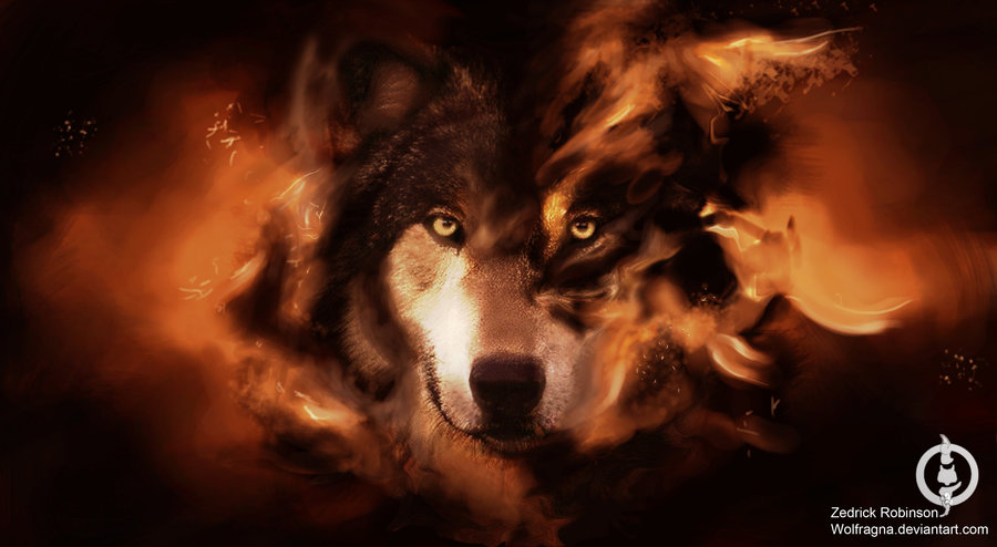 really cool wolf wallpapers - photo #24