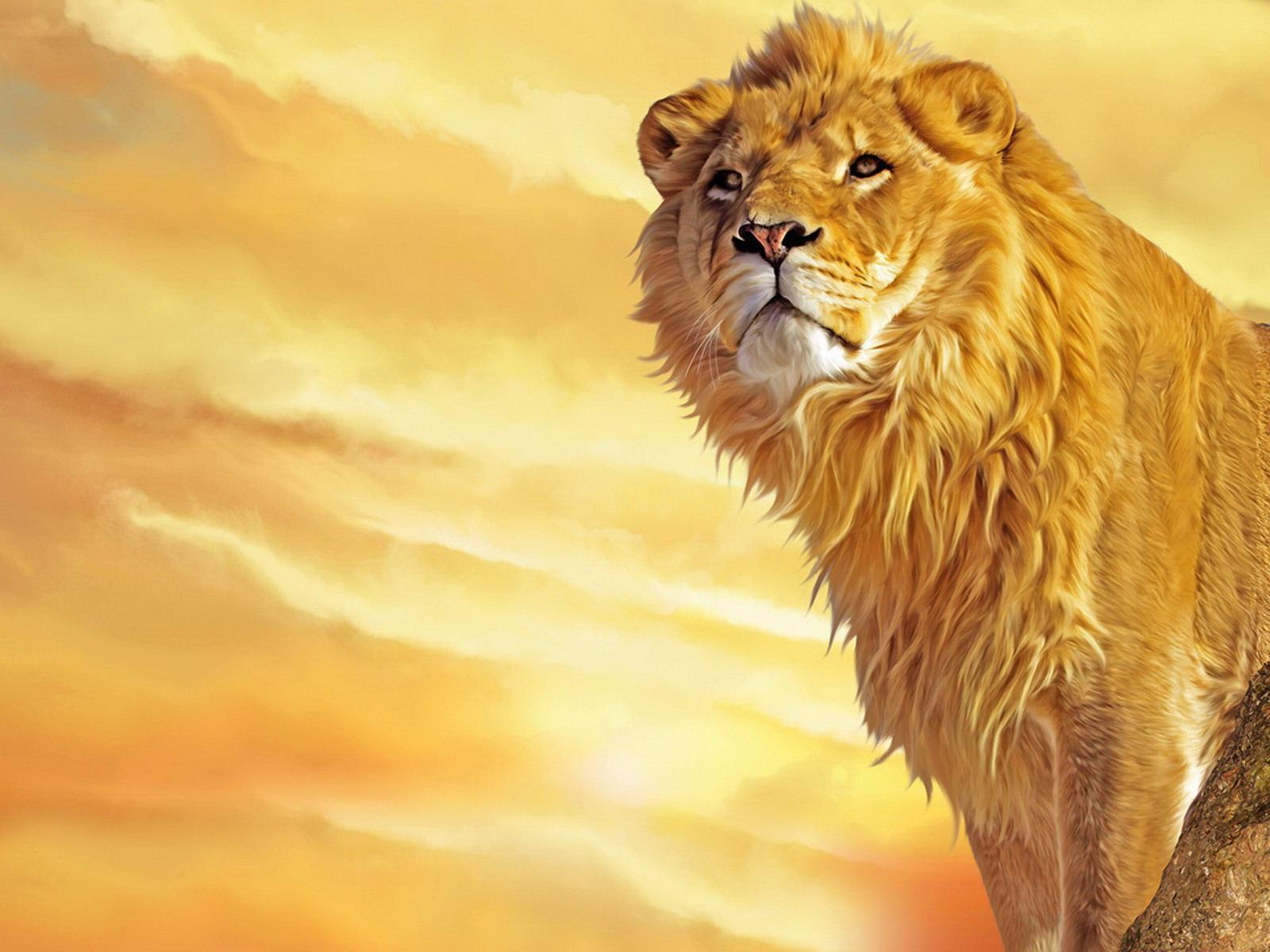 lion painting wallpaper 1600x1200