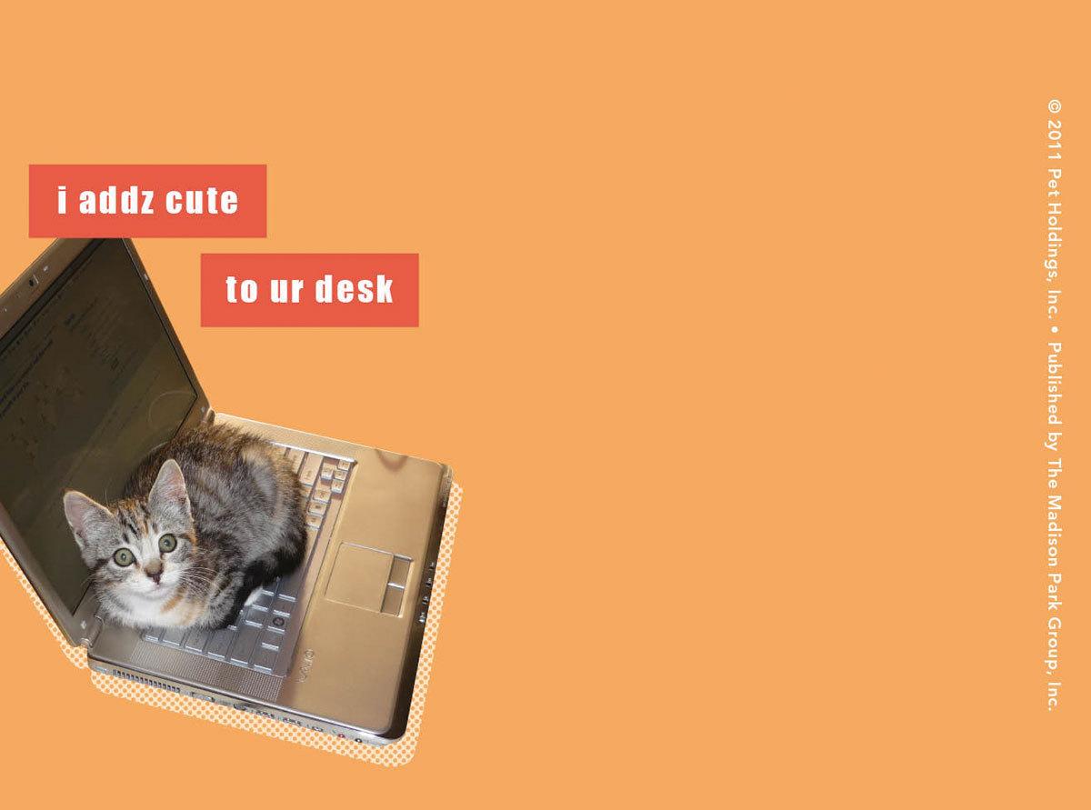 Zero Funny Jokes Humor Wallpaper Desktop 1200x891