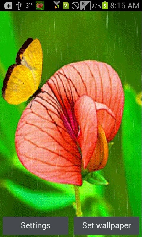 Butterfly In Rain Live Wallpaper Android Live Wallpaper download 480x800