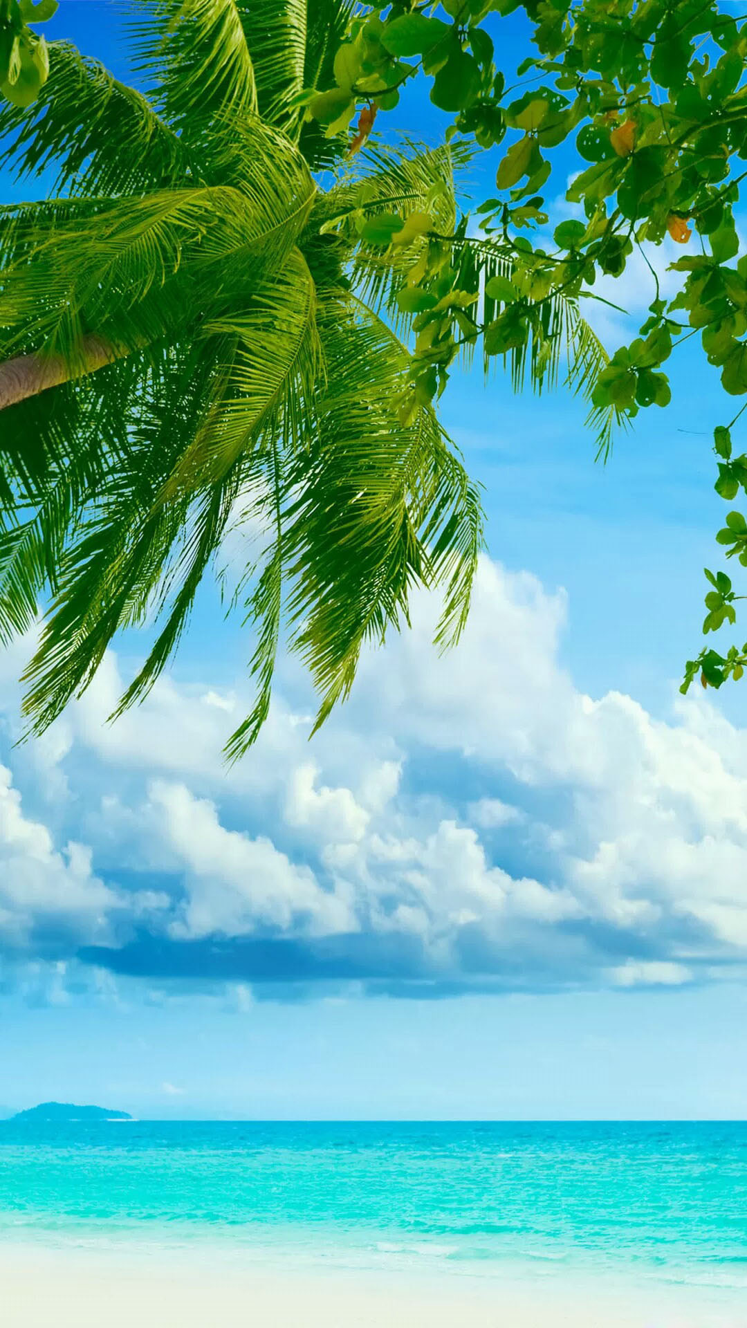 Tropical Beach Coconut Tree   Best htc one wallpapers 1080x1920