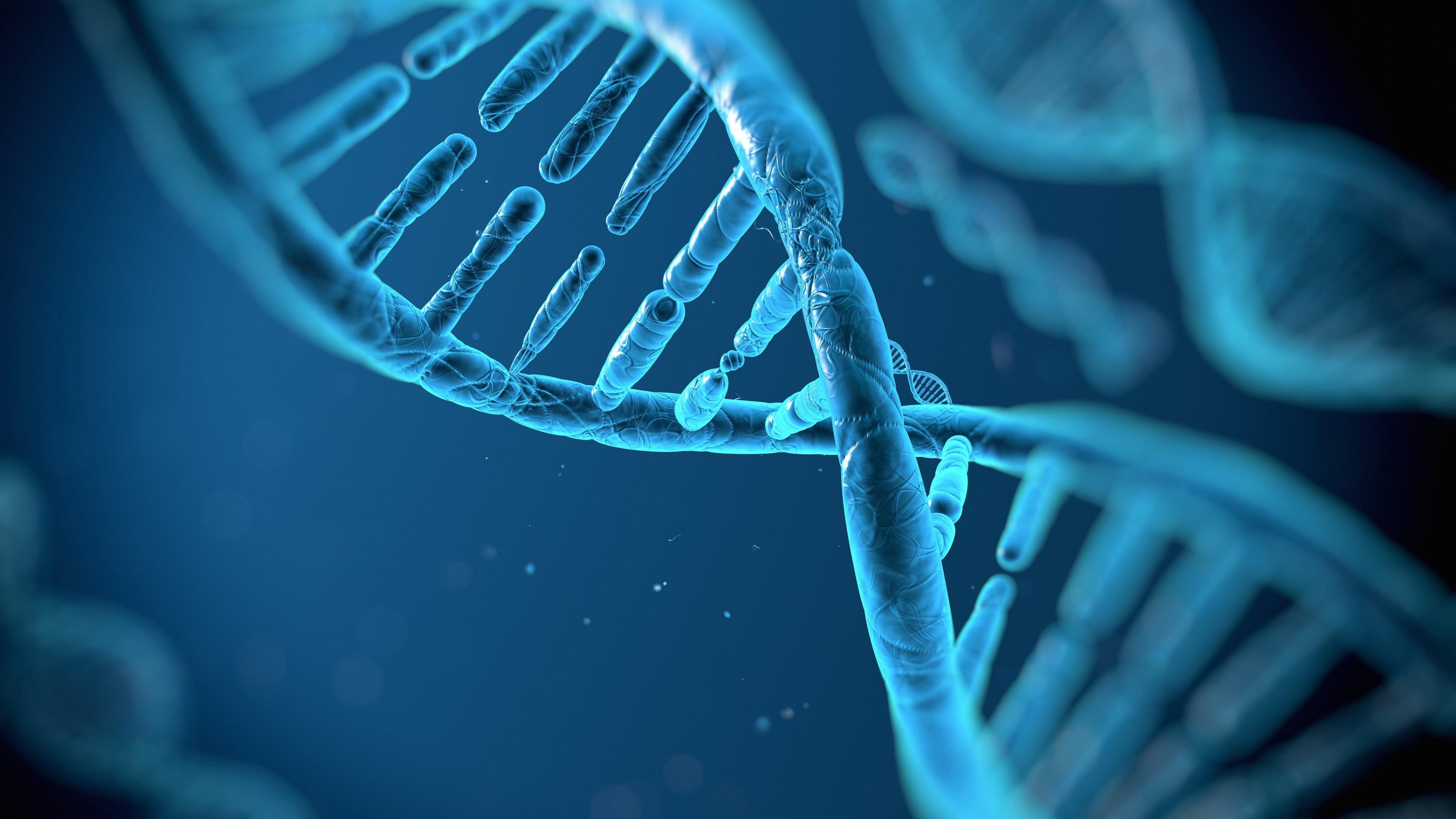 DNA Structure HD wallpaper for 4K 3840 x 2160   HDwallpapersnet 3840x2160