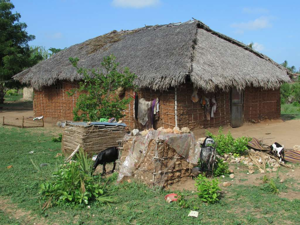 This thatched village house on Kilwa Kisiwani Island is typical of 1024x768