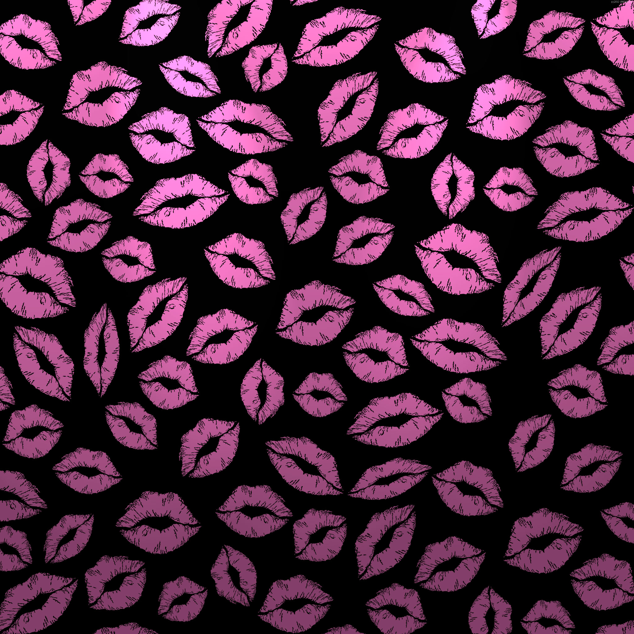 pink and black zebra print wallpaper hd pink and black zebra wallpaper 2048x2048