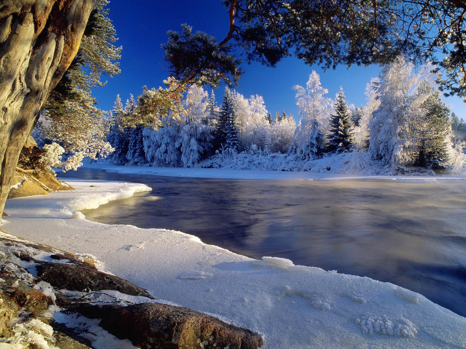 Canadian Holiday First Day Of Winter 2010 computer desktop 1600x1200