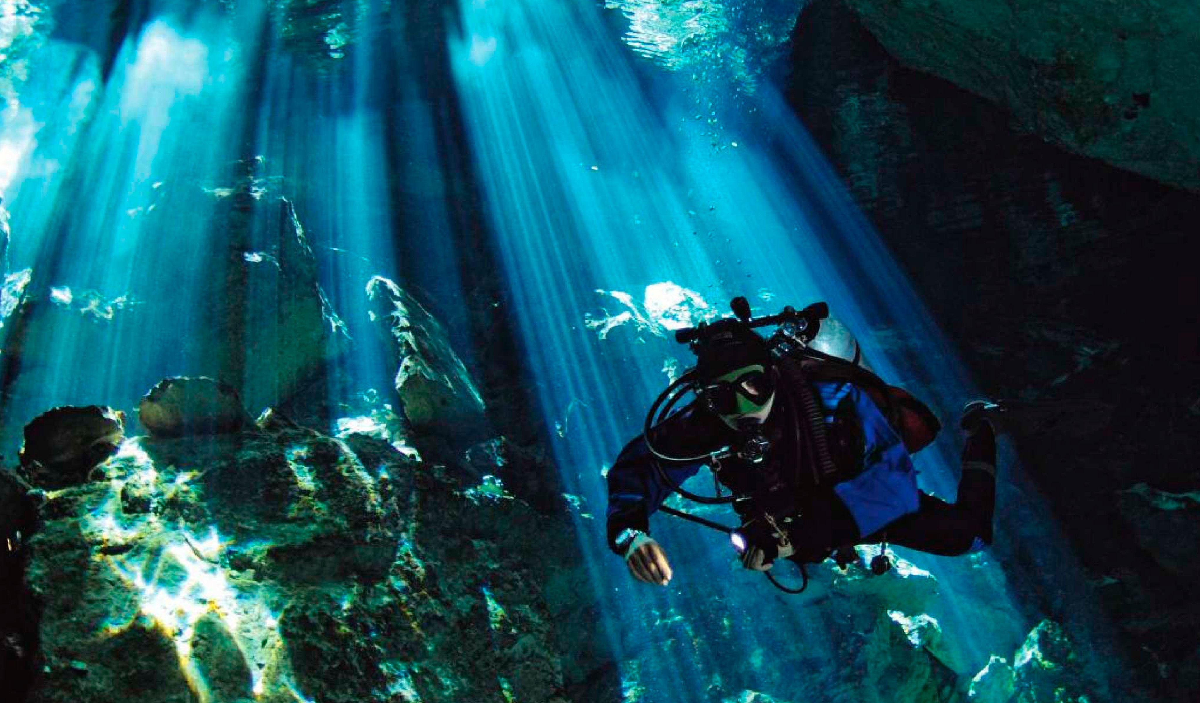 scuba diving wallpaper wallpapers - photo #22