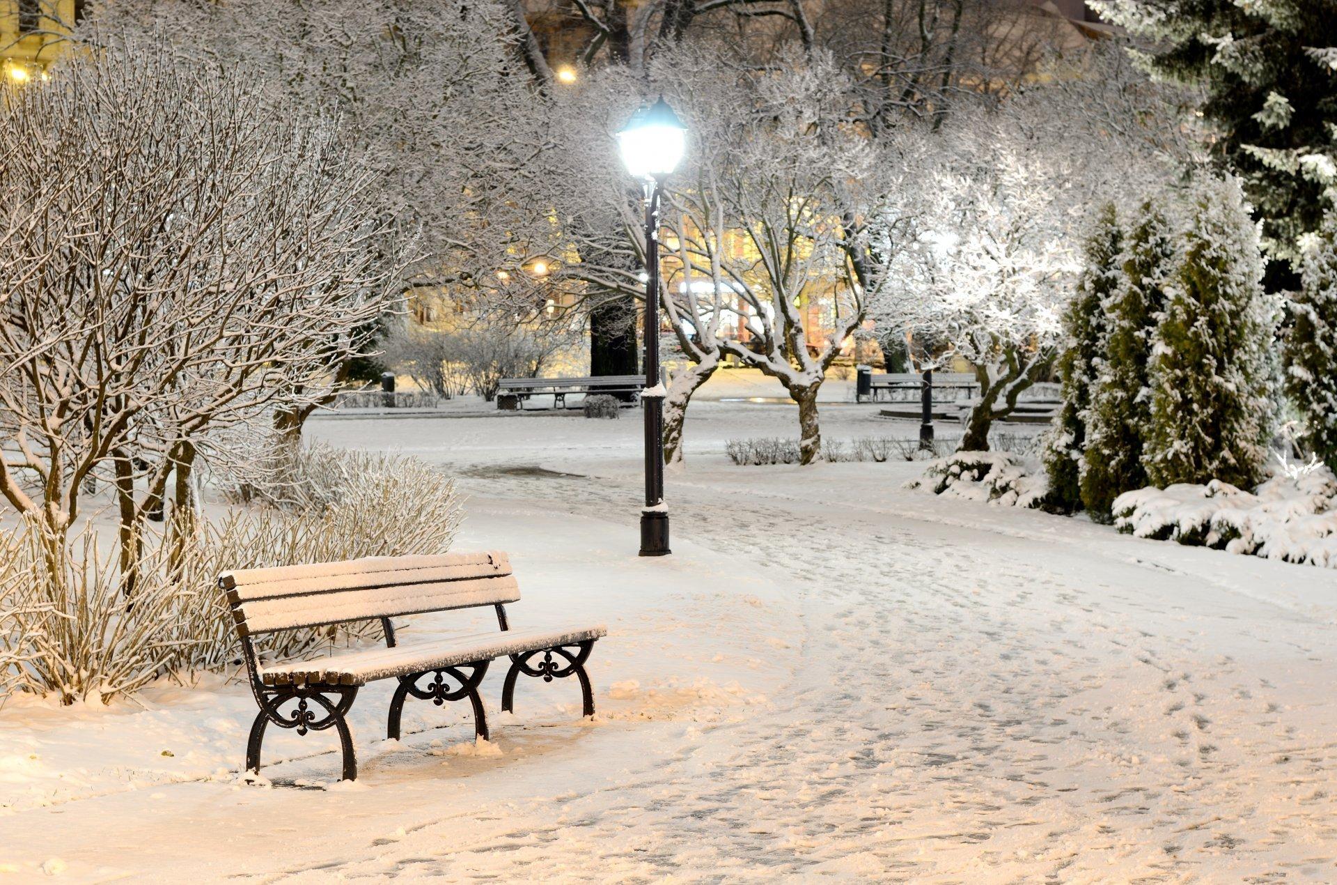 bench shop winter snow night lamps light nature park tree HD wallpaper 1920x1270