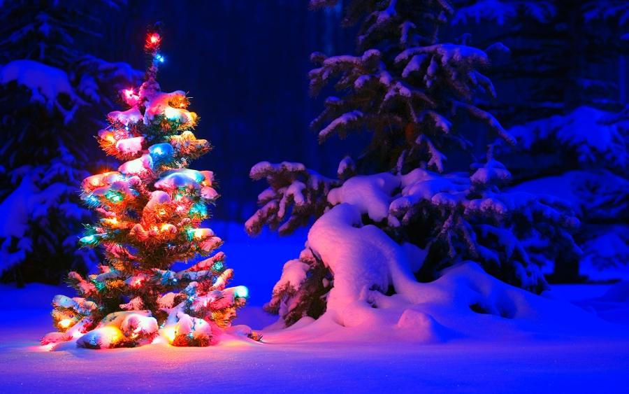 22 Christmas Desktop Backgrounds Premium Templates Local 900x563