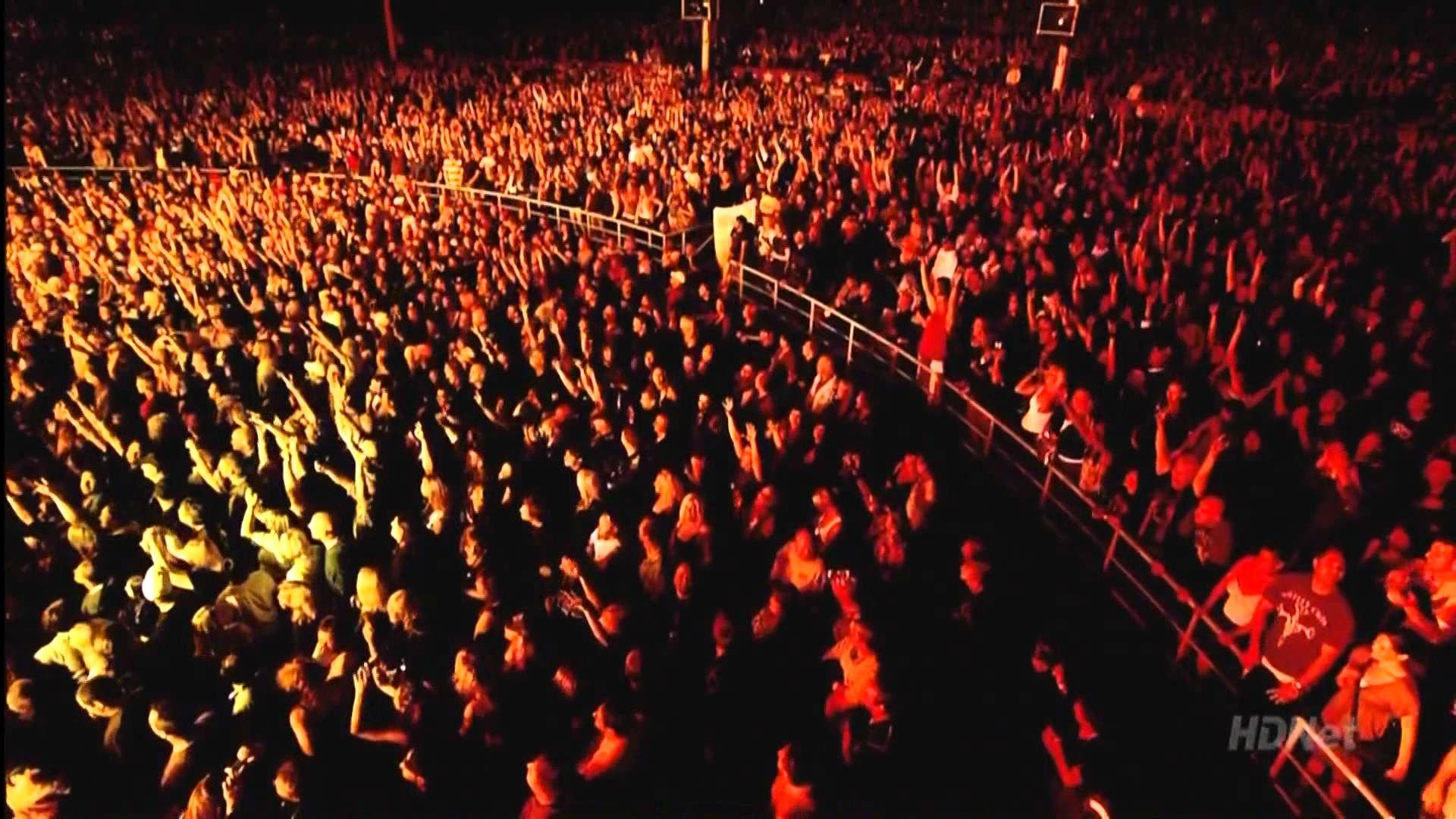 concert crowd wallpaper wallpapersafari