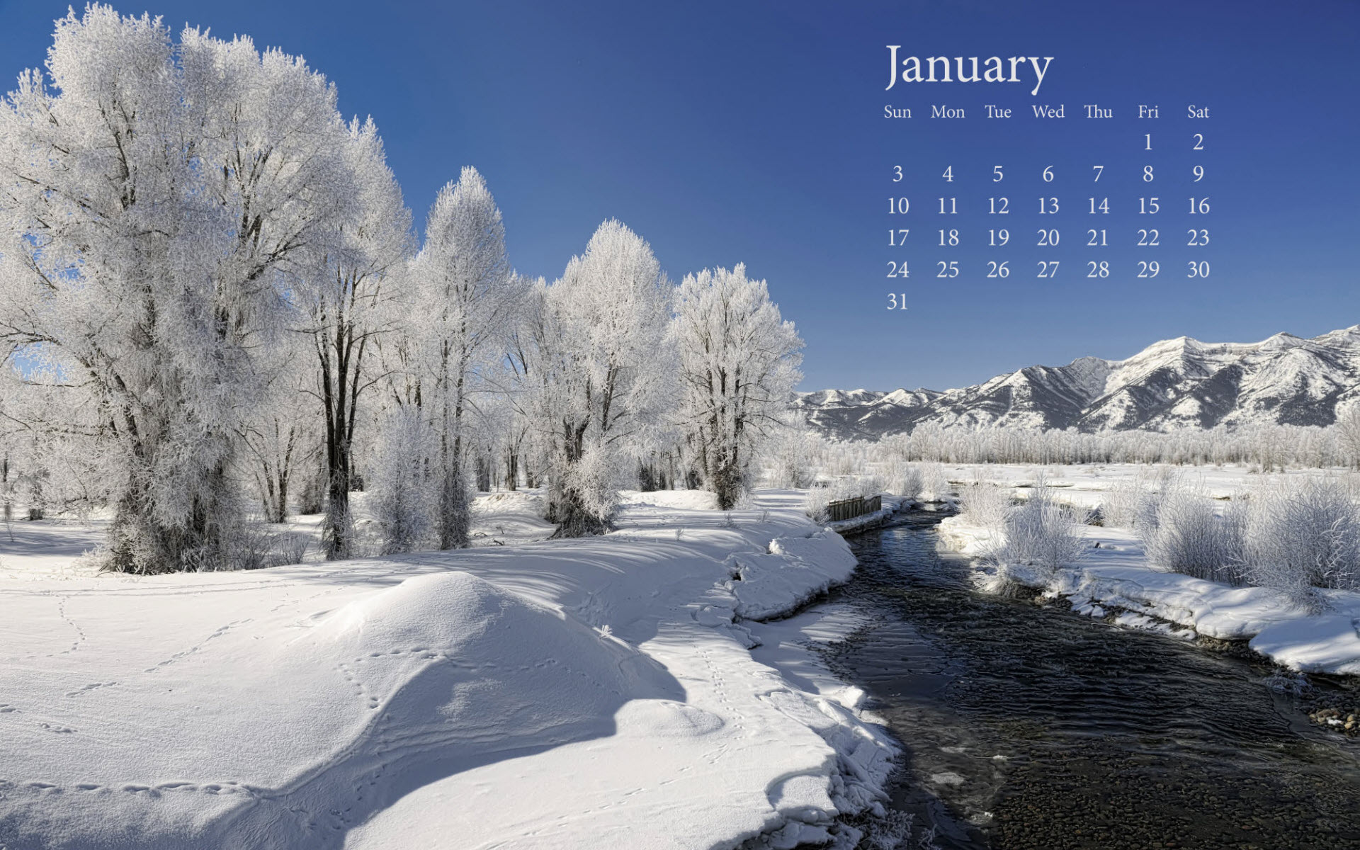 Fresh Snow January 2010 Calender Wallpapers HD Wallpapers 1920x1200