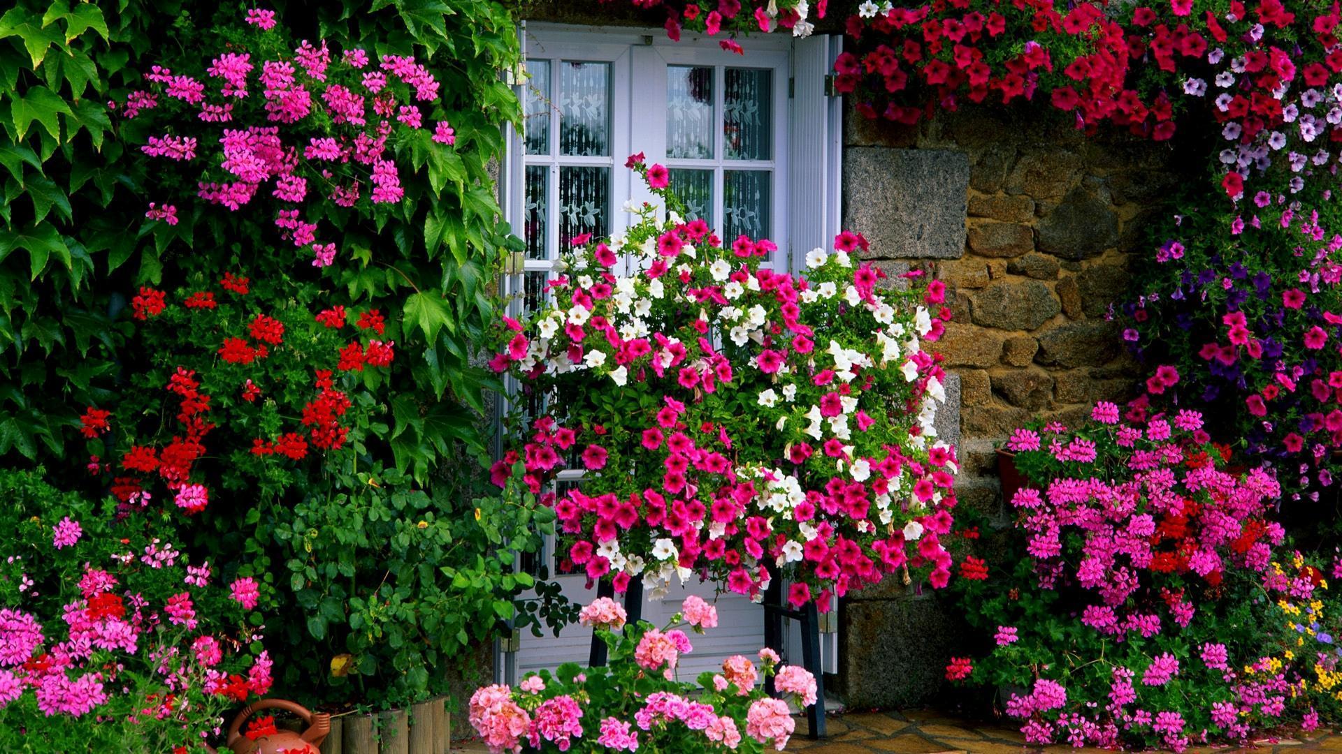 Spring garden wallpaper wallpapersafari for French balcony definition