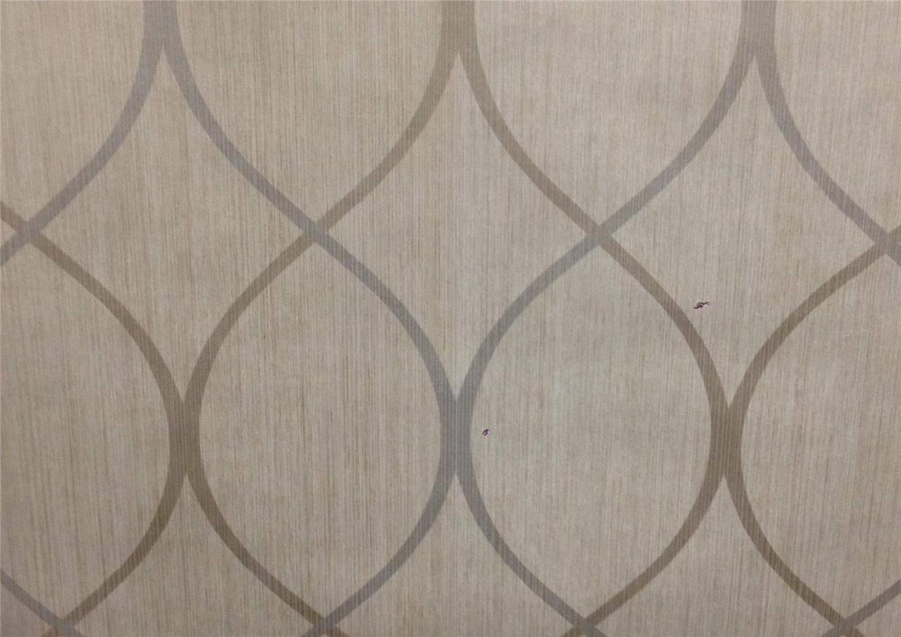 Wallpaper Designer Modern Trellis Tone on Tone Big Stripe Platinum 1280x905