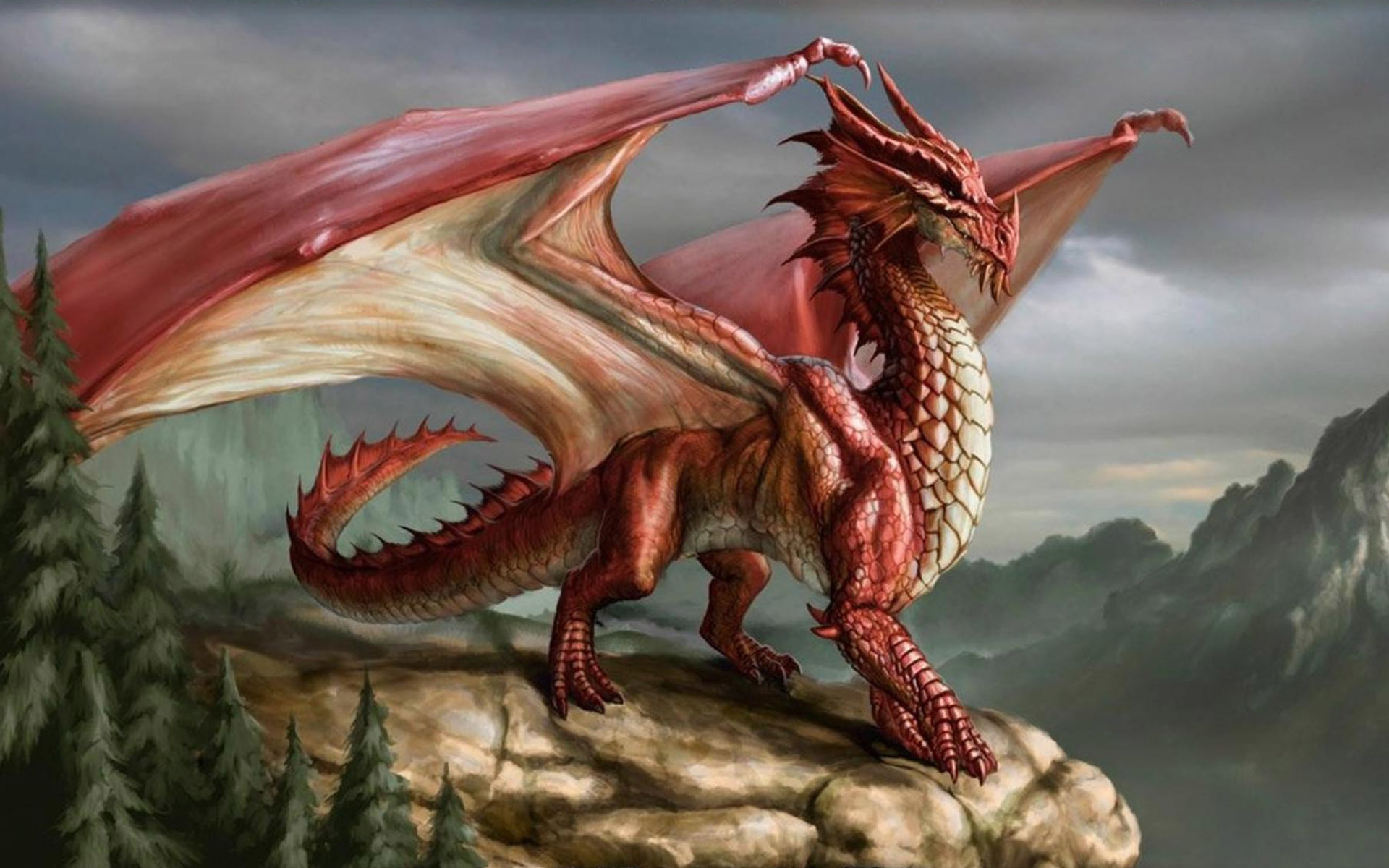 red dragon wallpapers full hd wallpaper search 382 red dragon on a ...