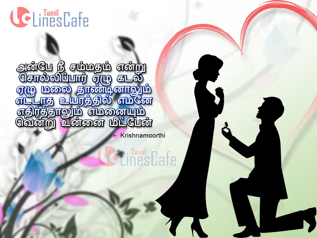 Love Propose Wallpaper Hd   Propose Day Quotes In Tamil 941776 1024x768