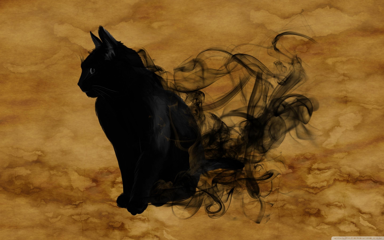 Free Download Halloween Black Cat 4k Hd Desktop Wallpaper For 4k Ultra Hd Tv 2880x1800 For Your Desktop Mobile Tablet Explore 64 Desktop Wallpaper Halloween Scary Halloween Desktop Wallpaper
