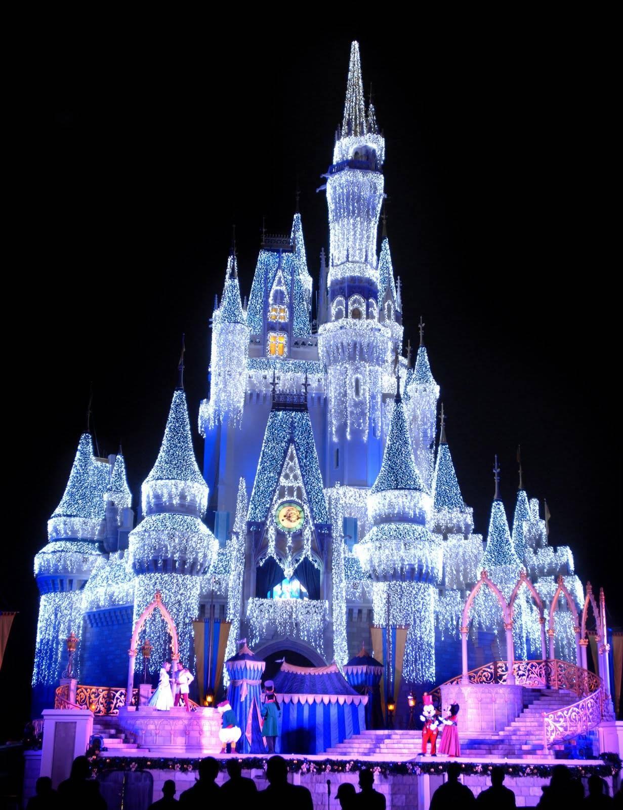 Magic Kingdom Magic Kingdom in Disney World 1231x1600