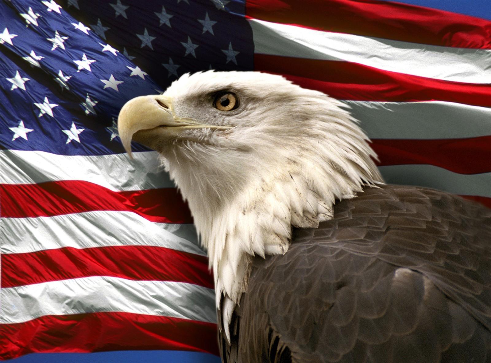 American Flag Eagle Wallpaper - WallpaperSafari