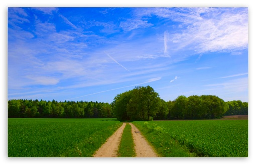 Summer Scenes HD desktop wallpaper Widescreen High Definition 510x330