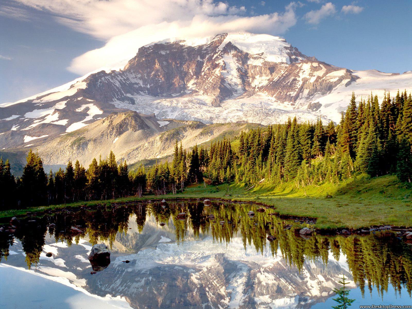 Best 48 Mount St Helens Wallpaper on HipWallpaper Amount 1600x1200
