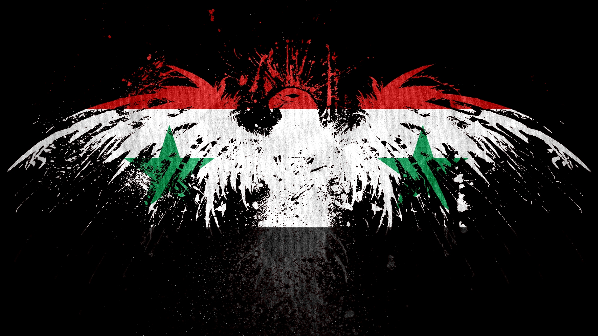 Best 51 Syrian Wallpaper on HipWallpaper Syrian Hamster 1920x1080