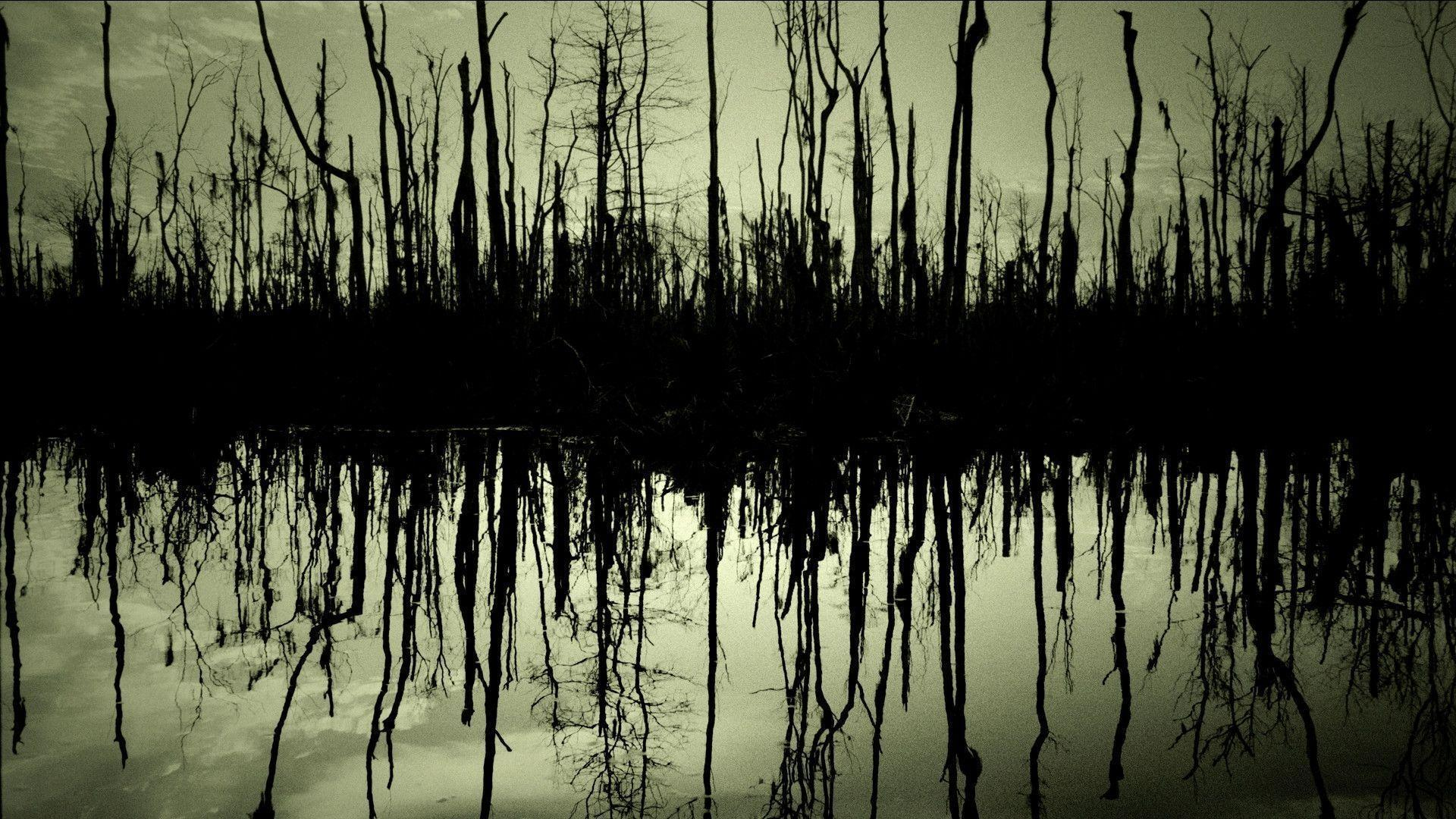 Swamp Backgrounds 1920x1080