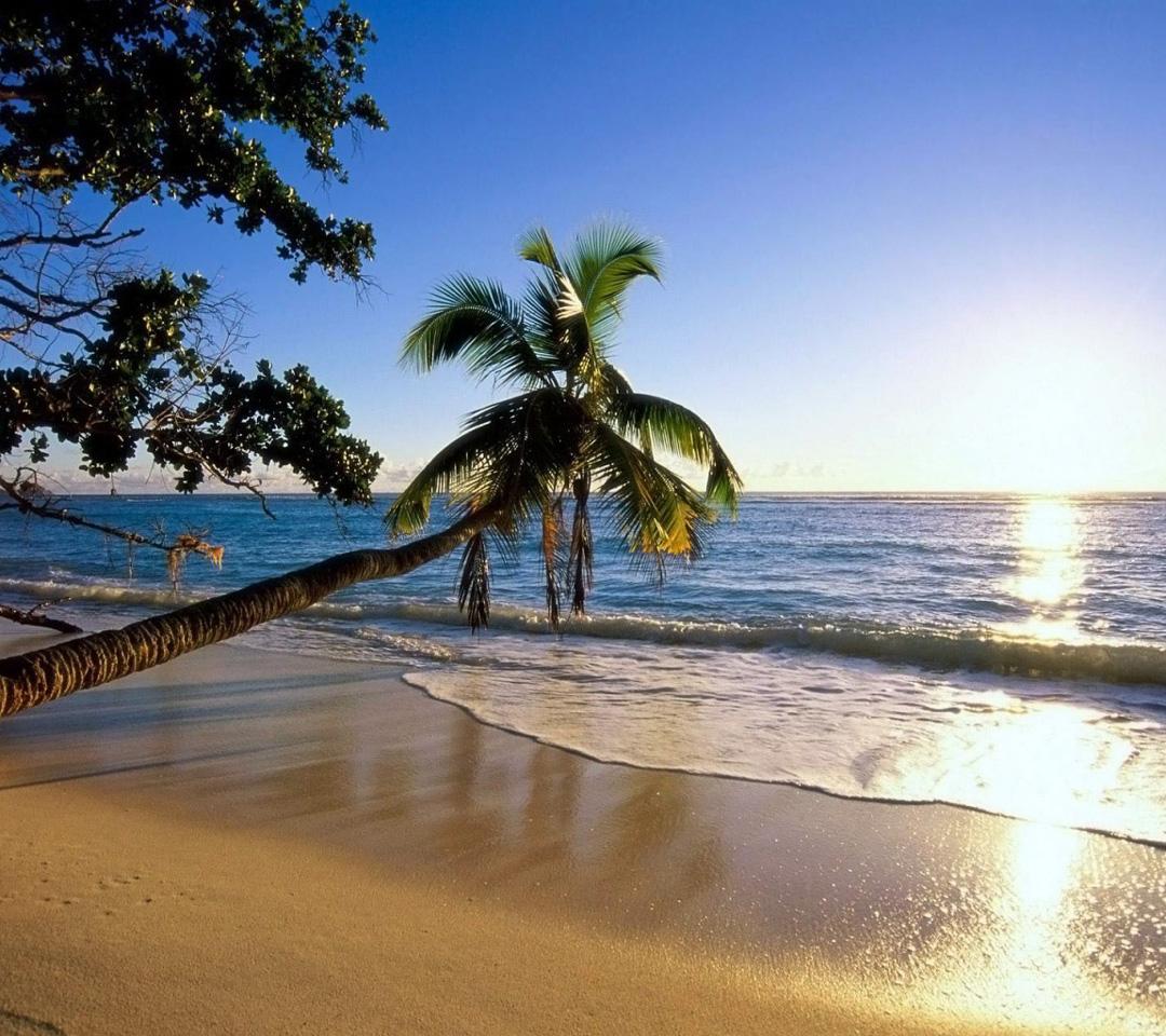 Summer Beach Wallpaper Screensavers