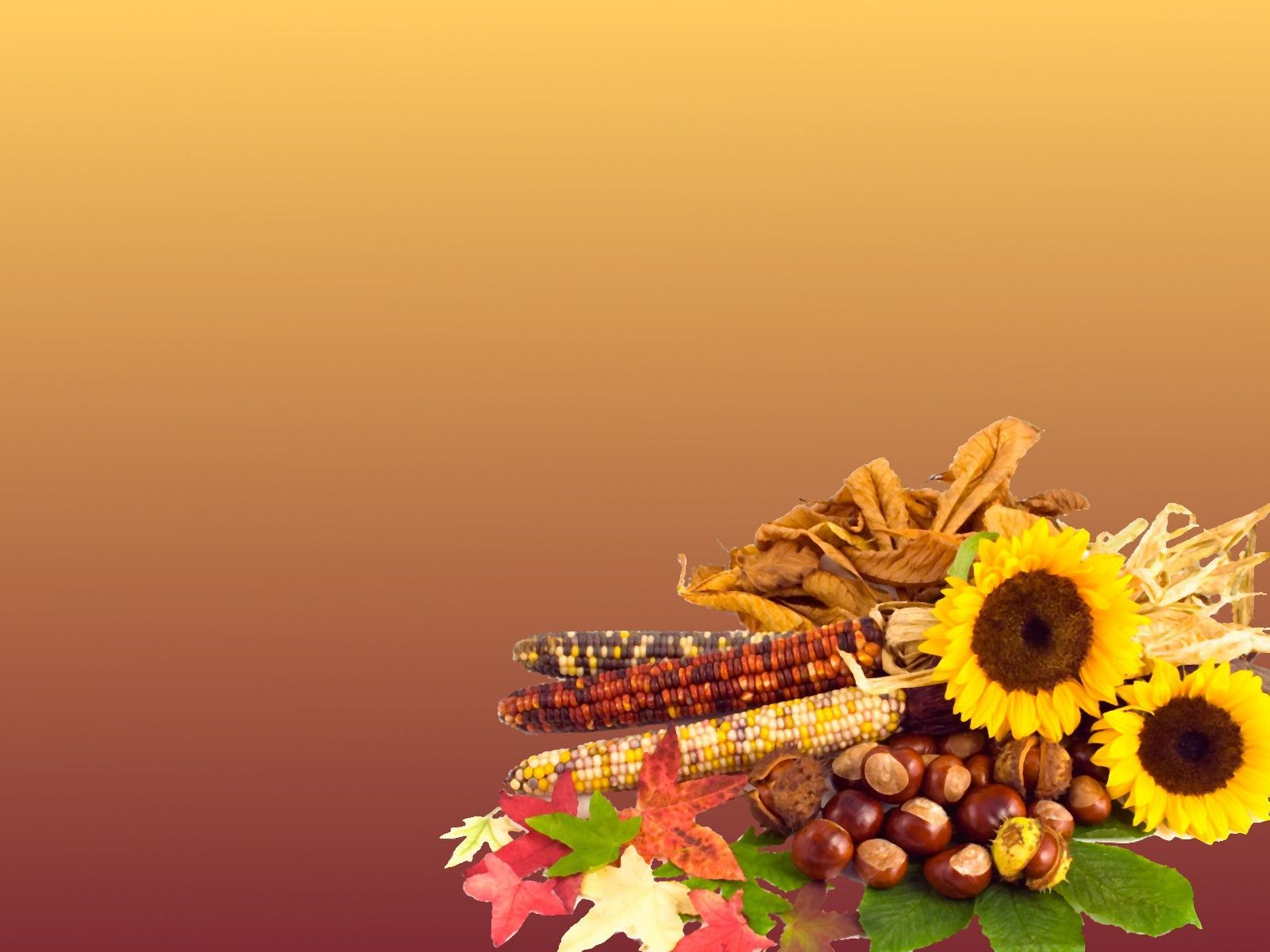thanksgiving desktop wallpapers backgrounds   SF Wallpaper 1600x1200