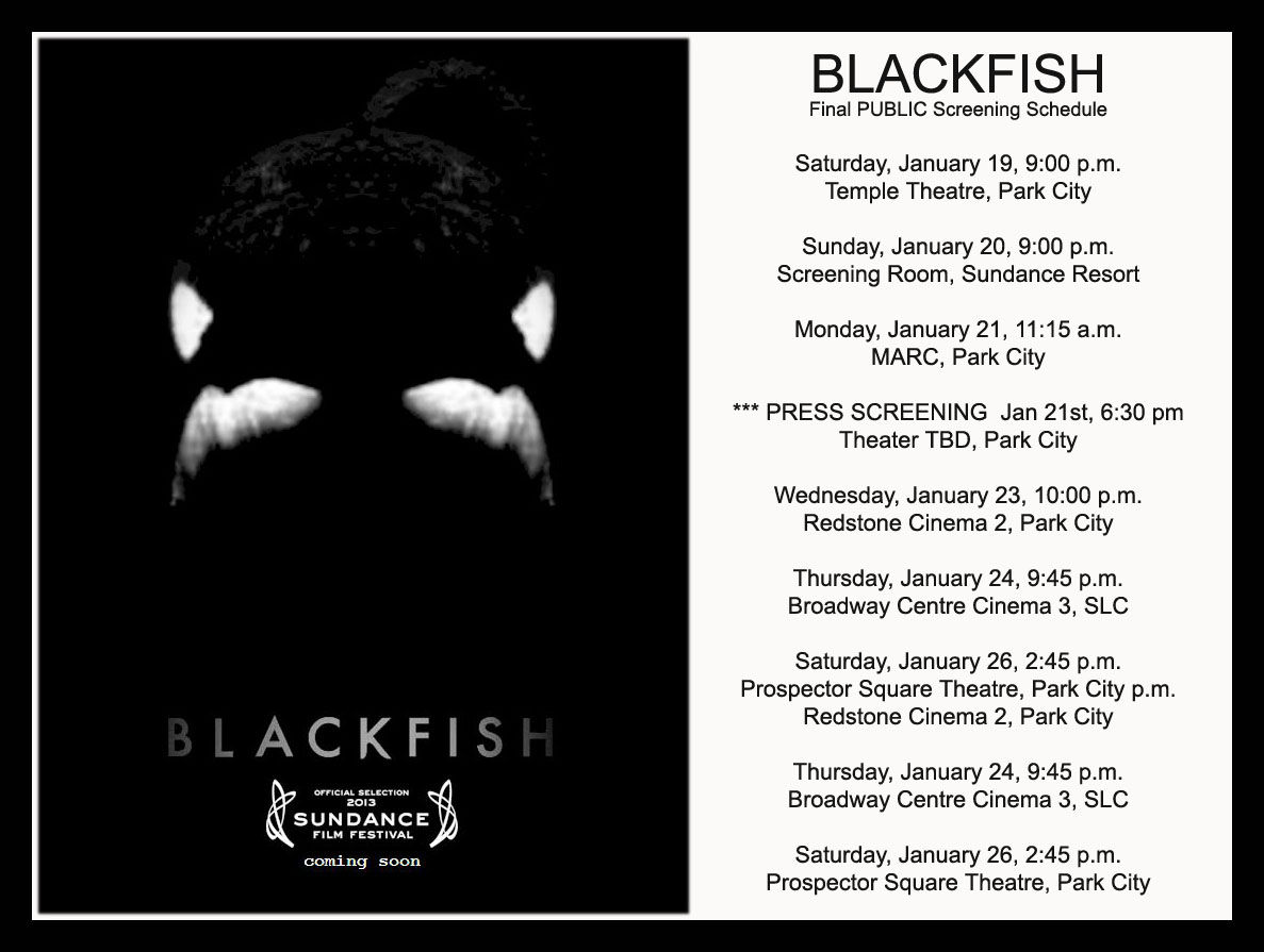 Op Ed Mystery and intrigue surrounds premiere of Blackfish at 1187x895