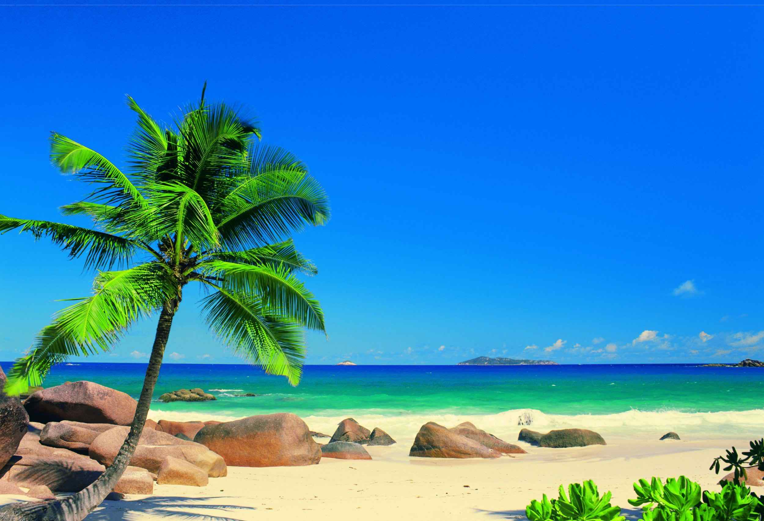 Caribbean HD Desktop Wallpapers Toptenpackcom 2500x1706