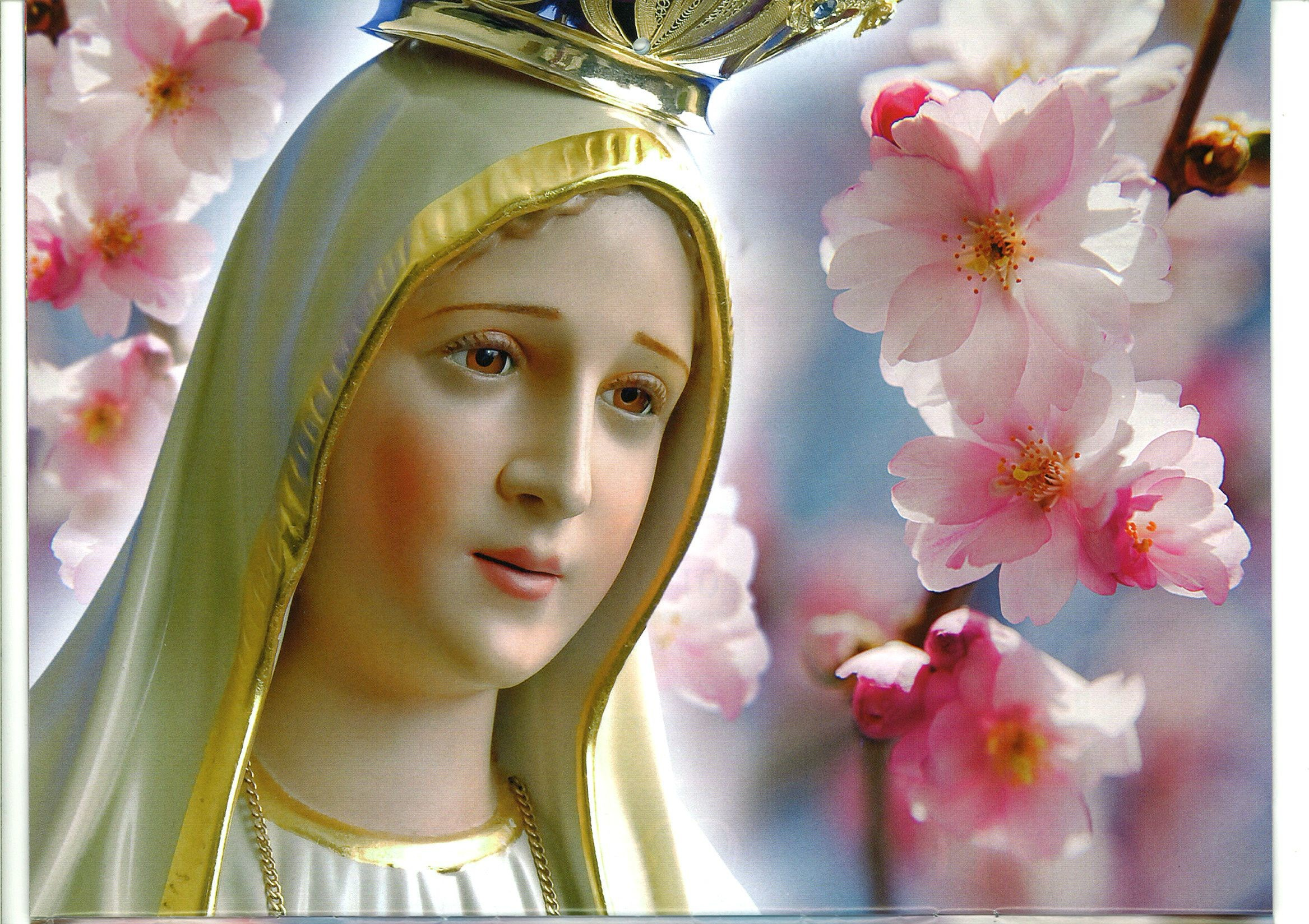 Mary Mother of God Wallpaper 2335x1648