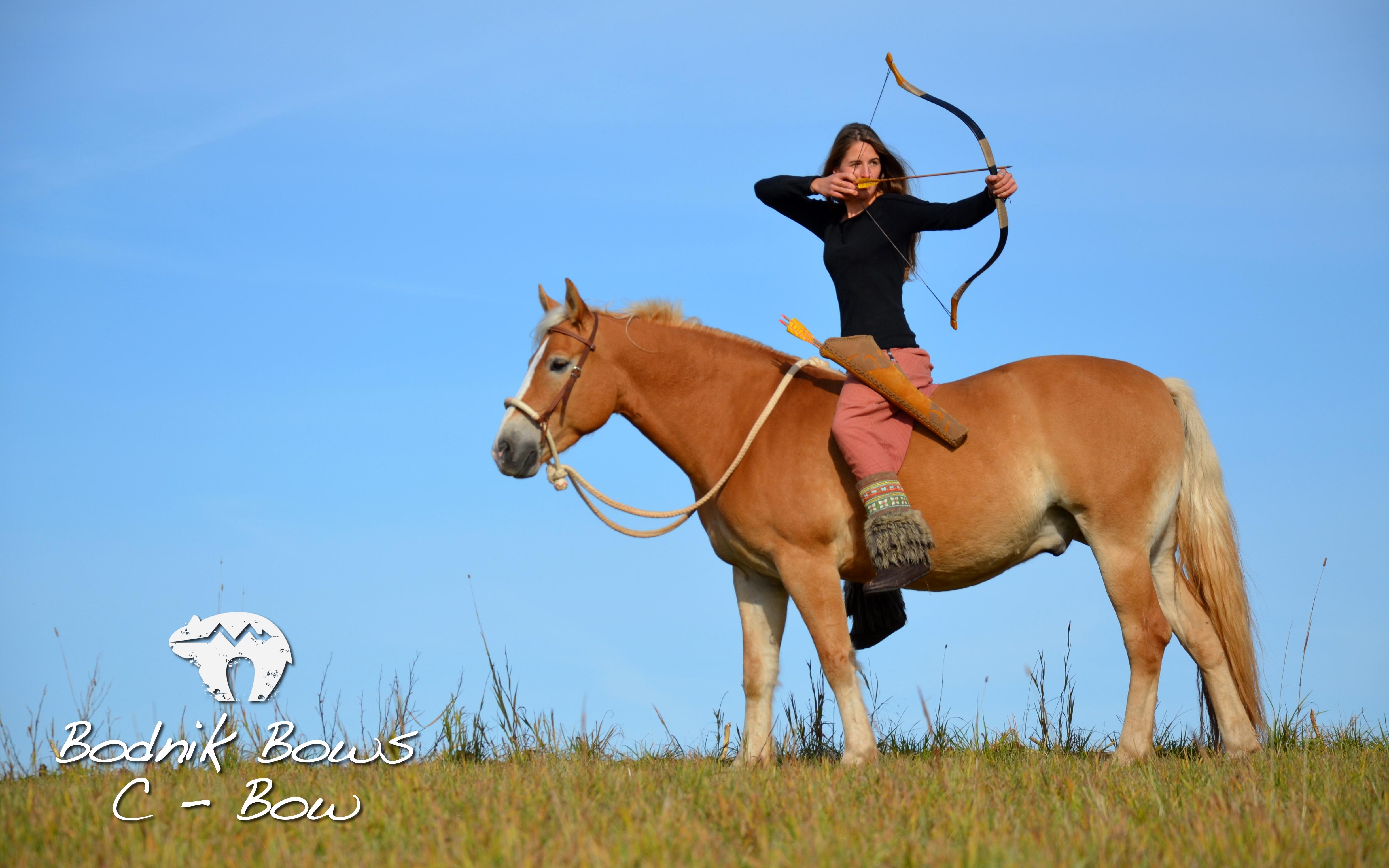 download Hintergrundbild C Bow Horseback Archery 4901x3064