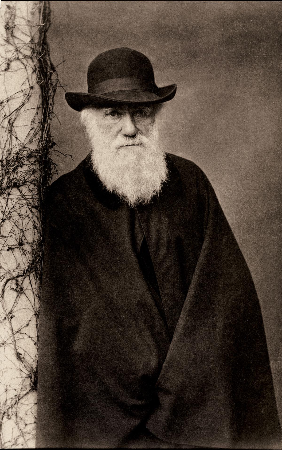 Happy Birthday Charles Darwin Advances in the History of Psychology 1200x1910