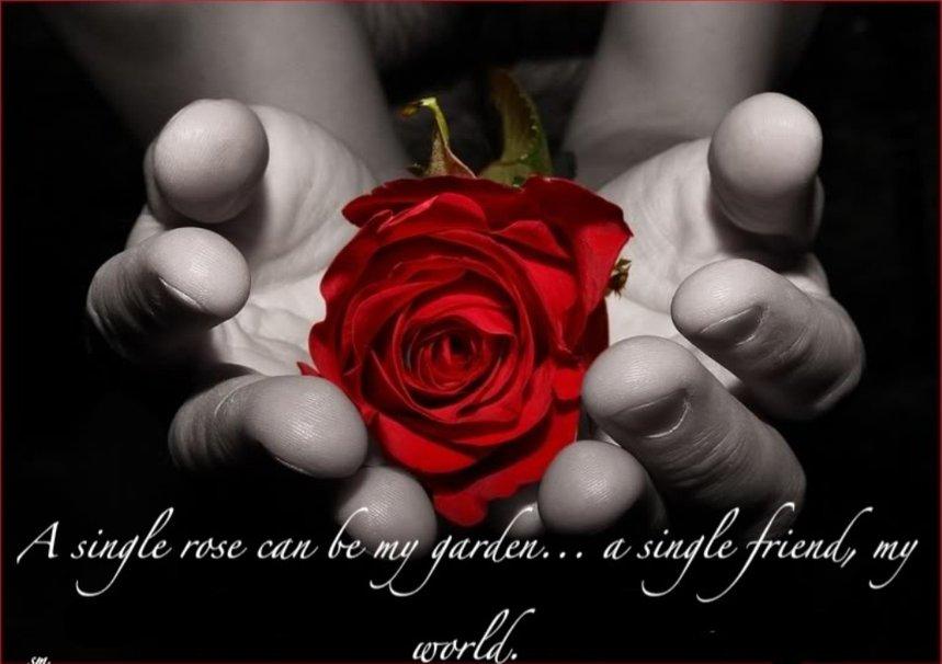 love you my friends wallpaper   ForWallpapercom 859x606