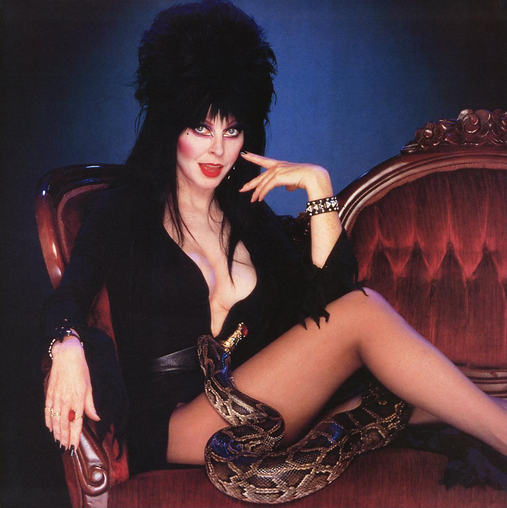 Elvira   Elvira Photo 16711828 1015x1017