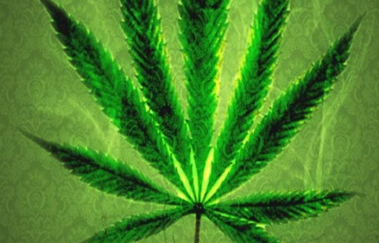 Big Weed Leaf   HD Weed Wallpapers 780x500