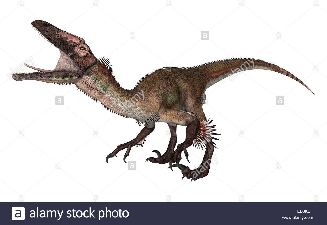 3D digital render of a dinosaur utahraptor isolated on white Stock 1300x893