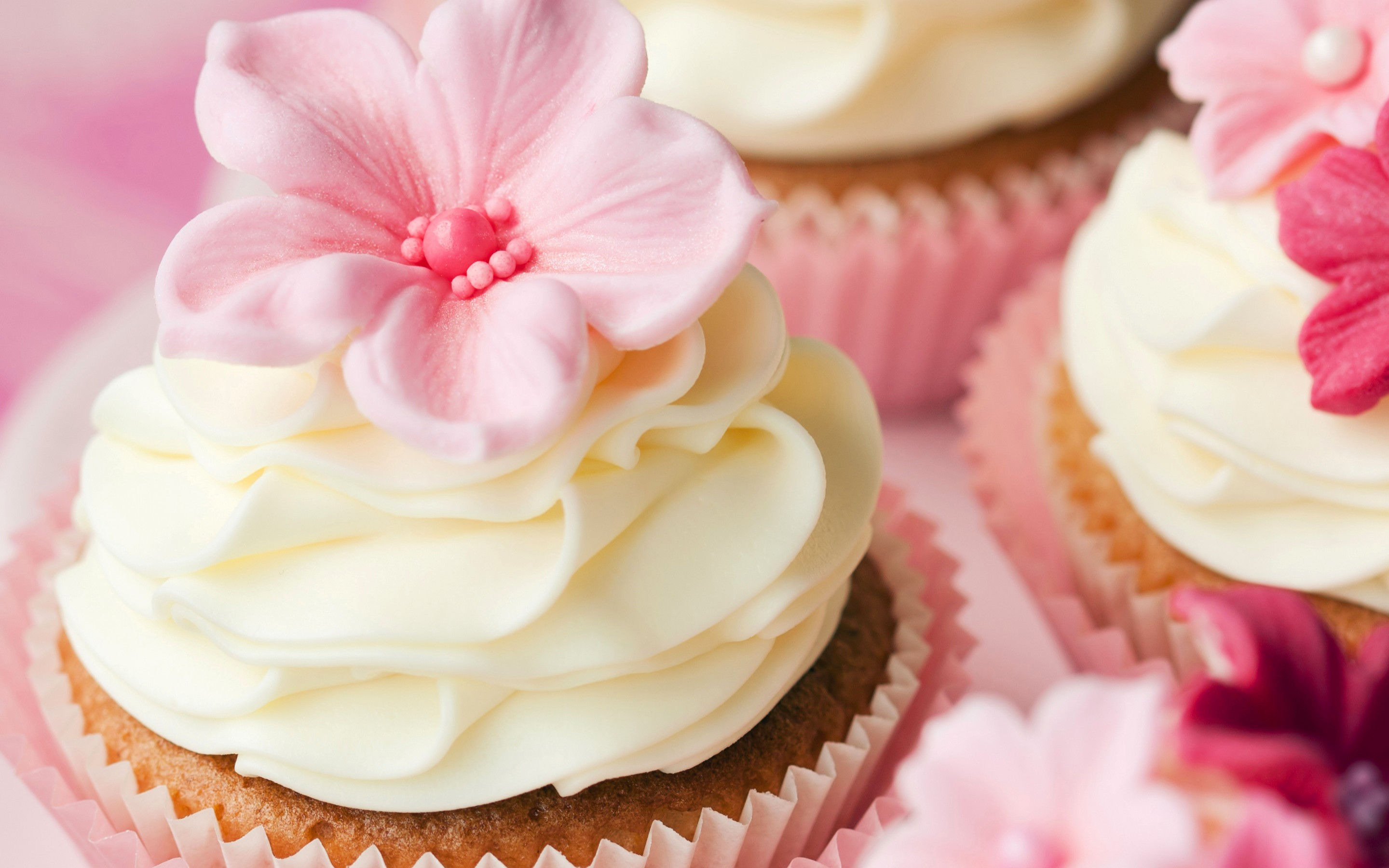 Food   Cupcake Wallpaper 2880x1800
