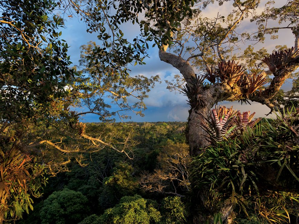 Picture    Ecuador Wallpaper    National Geographic Photo of the Day 990x742