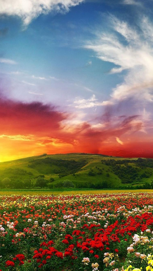 50 Spring Wallpaper For Iphone 5s On Wallpapersafari
