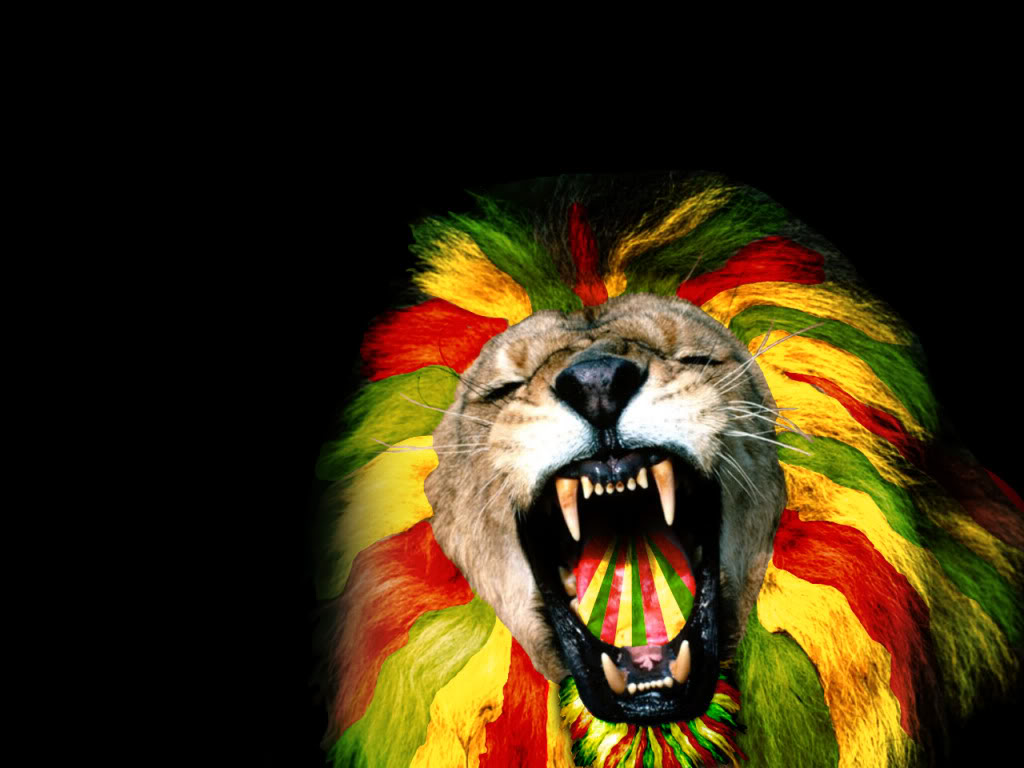 Download Reggae Lion Wallpaper 1024x768 Reggae Lion Wallpaper I5k23