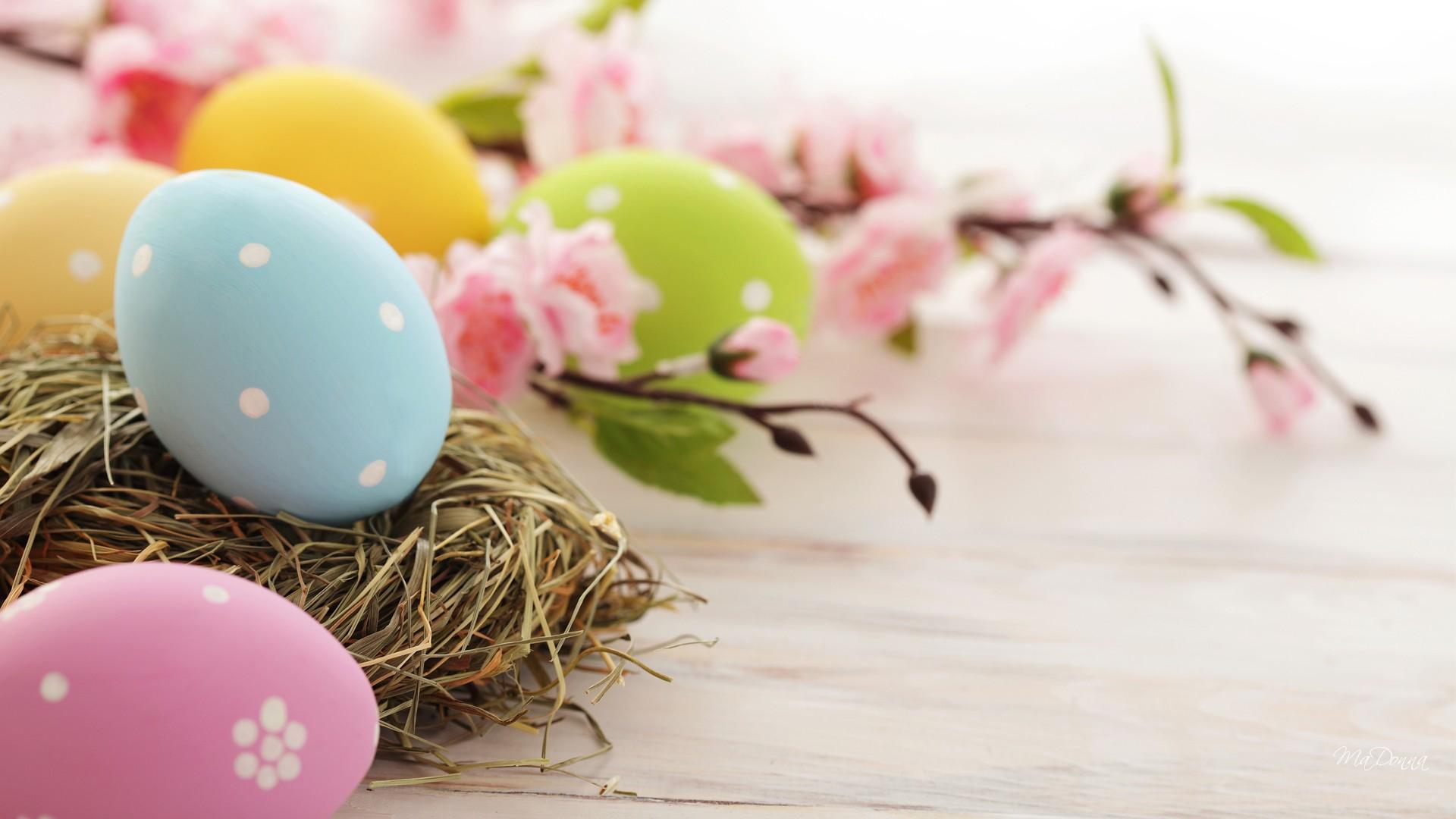 Free Download Desktop Easter Backgrounds Hd Easter Images 1920x1080 For Your Desktop Mobile Tablet Explore 65 Easter Backgrounds Desktop Funny Easter Desktop Wallpaper