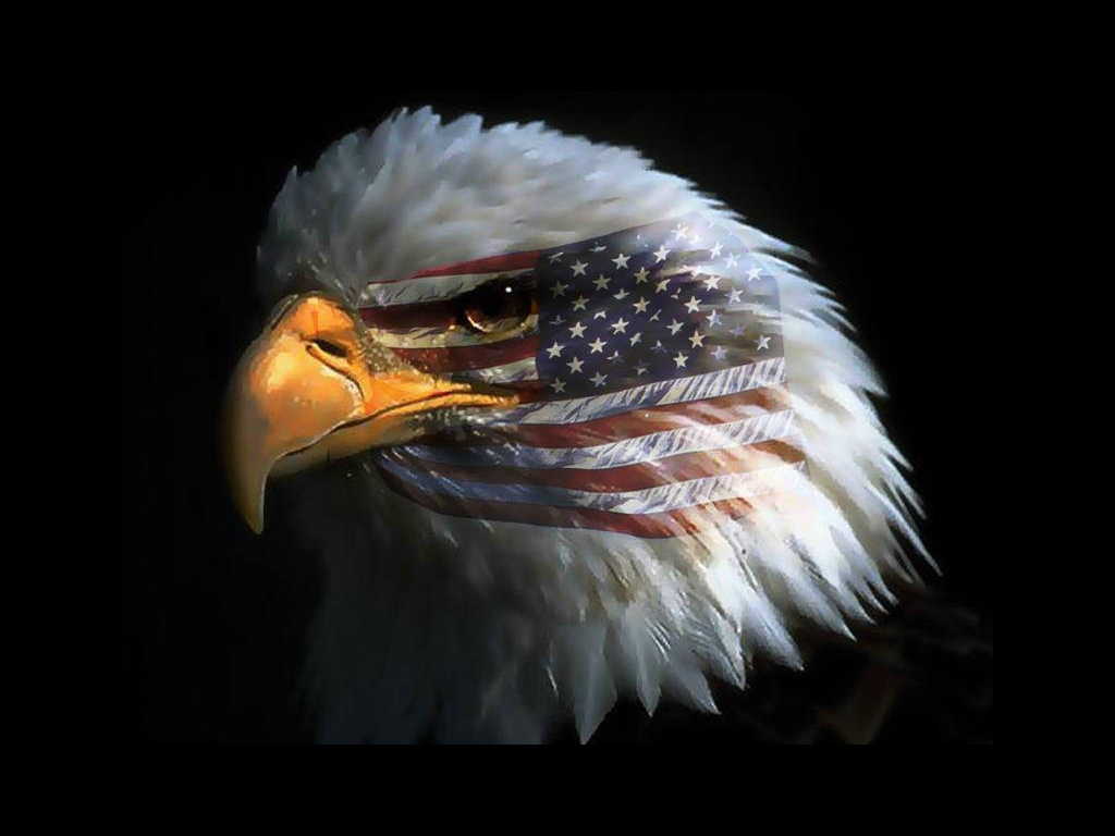 American Eagles Wallpaper 1024x768 American Eagles Flags 1024x768
