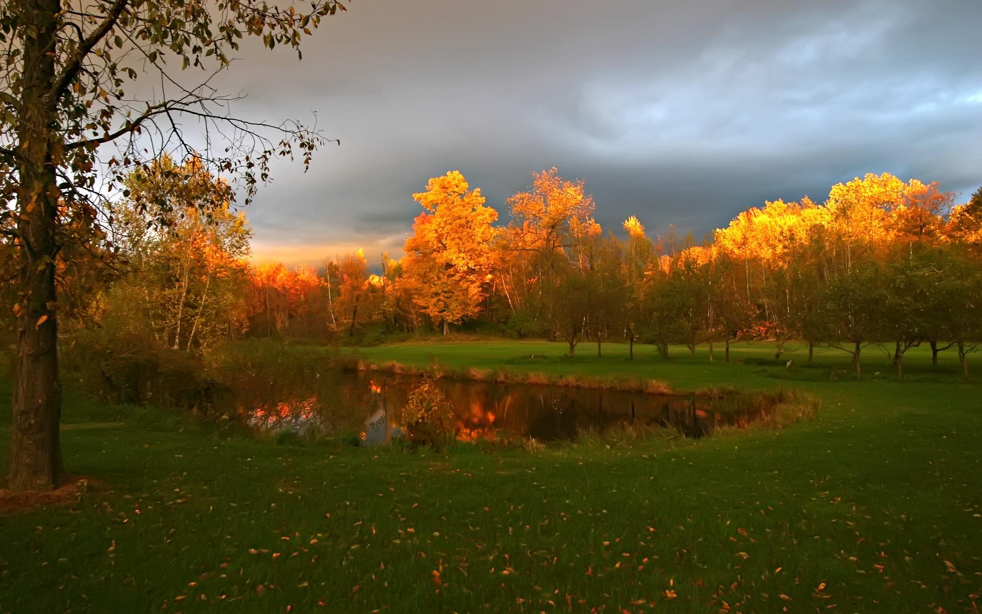 осень озеро природа облака деревья  № 2491624 без смс
