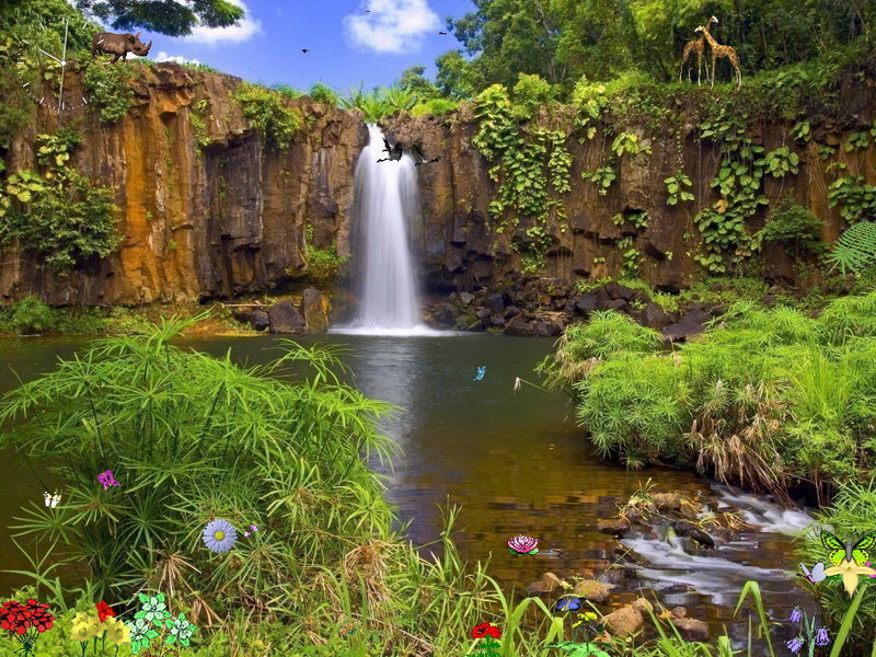 Nature Screensaver   Nature Reserve   FullScreensaverscom 800x600