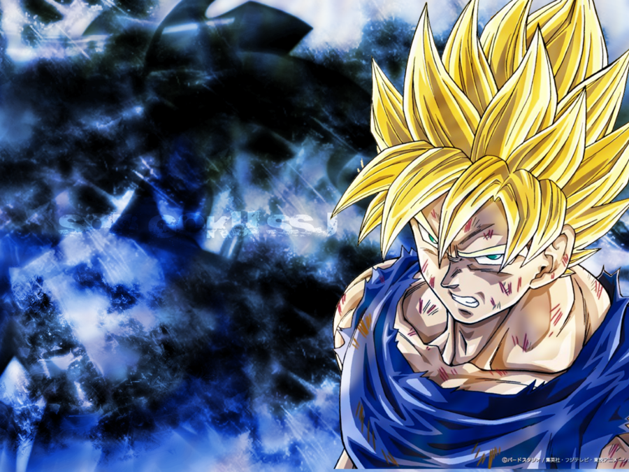 Free Download Gallery Dbz Wallpapers Goku 900x675 For Your