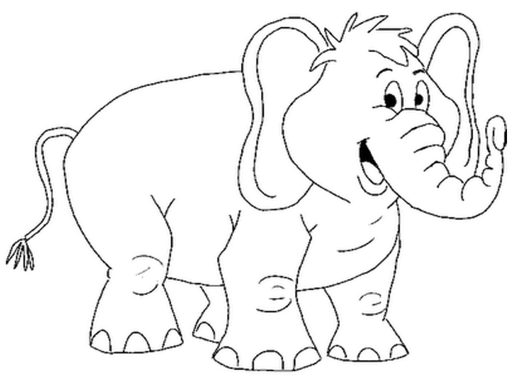 Coloring pages hd - Name Animals Elephant Coloring Pages 7 Coloring Book Pages Images Of