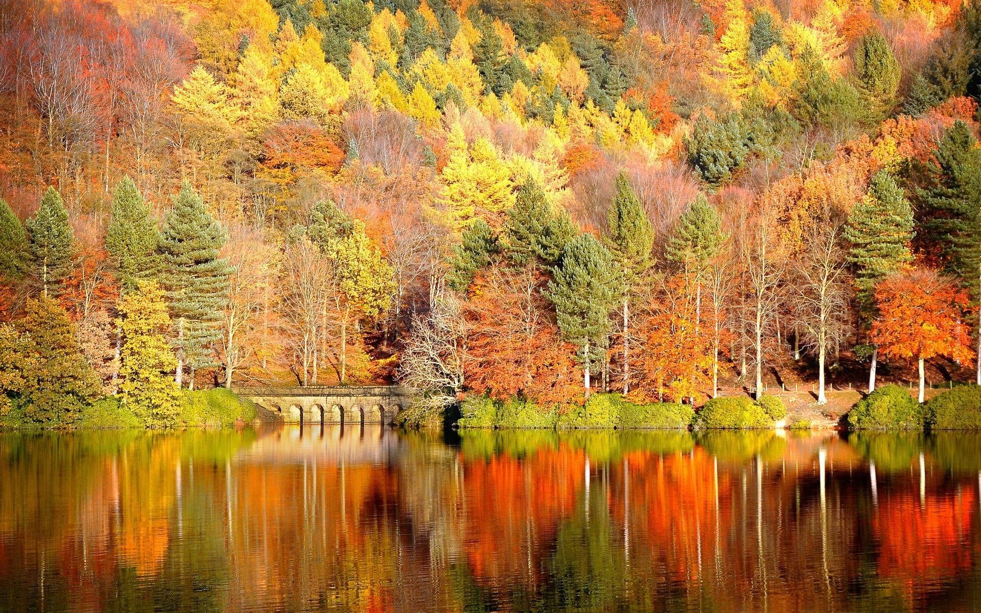 autumn desktop backgrounds hd Pictures 19201200 Autumn Images 1920x1200